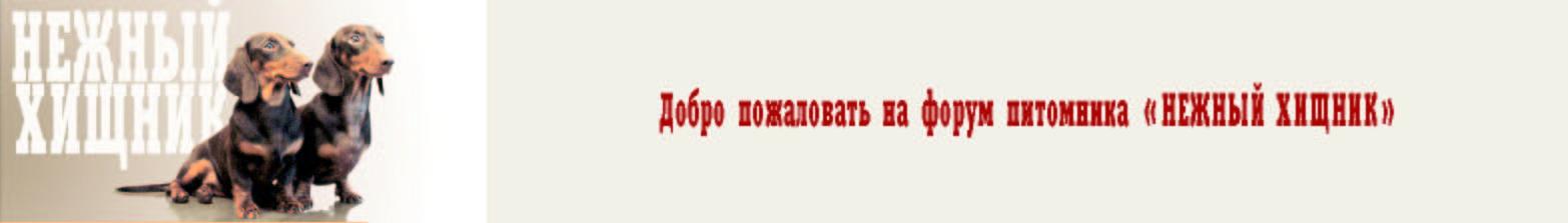 На сайт питомника